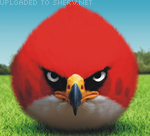Real life Angry Bird emoticon (Bird emoticons)
