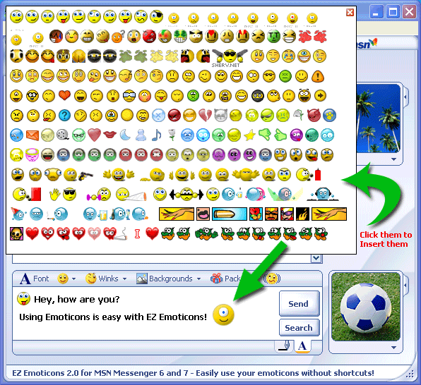 NET - MSN Display Pictures, MSN Emoticons, MSN Names, MSN Icons and Display